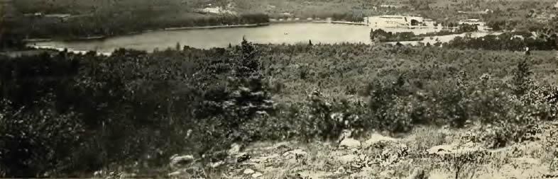 Muscatanipus Pond